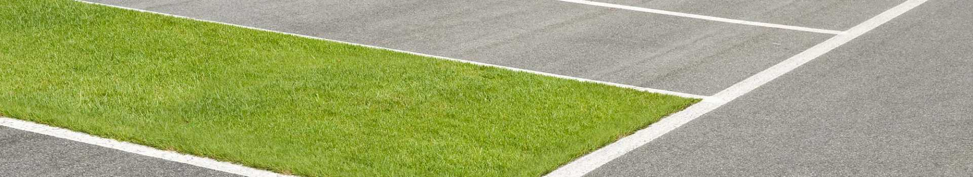 GD Grass Driveways